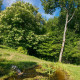 Retraite du 5 au 12 Juillet avec Ariane Albecker aux Jardins du Nant (74) : Sur le Chemin de l'Être