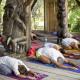 Retraite de yoga du 19 au 22 juillet 2019 avec Salomé Cadoux à Trimurti Village